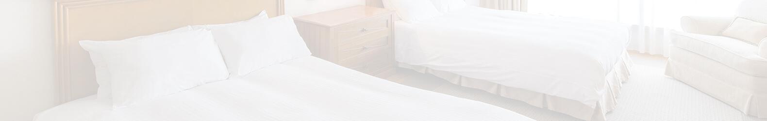 ホテルWi-Fi利用例